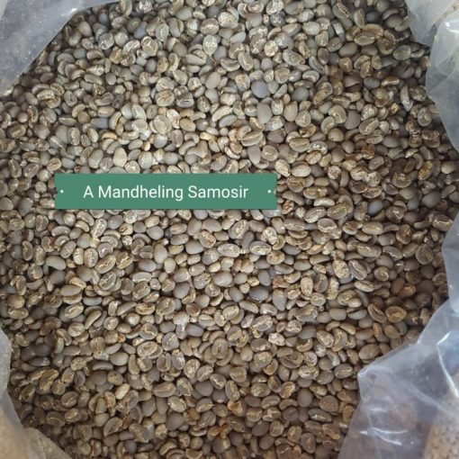 Arabica-Mandheling samosir-coffee