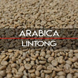 Specialty Lintong Arabica Coffees
