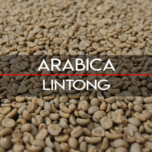 Specialty Lintong Arabica Coffees