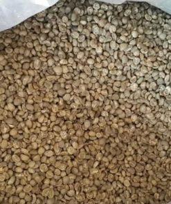 Mandheling-coffee-bean