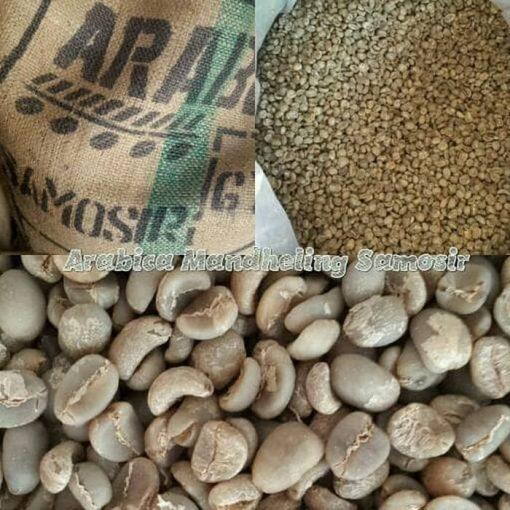 Mandheling samosir-coffee