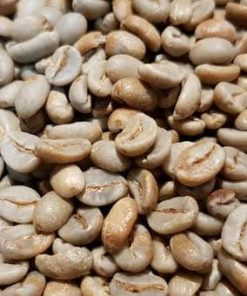 gayo honey green coffee beans