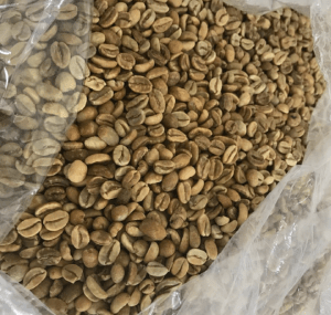 grean bean gayo coffee