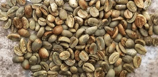honey coffee beans