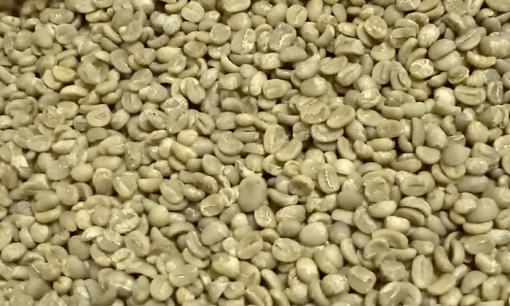 kerinci bulk coffee beans
