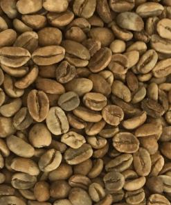 specialty grean bean gayo coffee