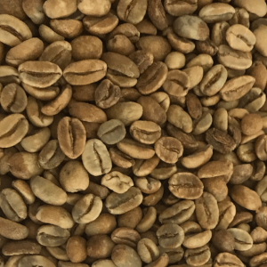 specialty grean bean gayo coffee
