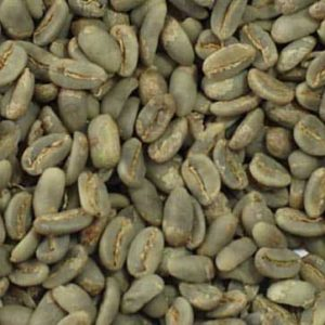 Gayo LONGBERRY ABYSSINIA arabica coffee bean