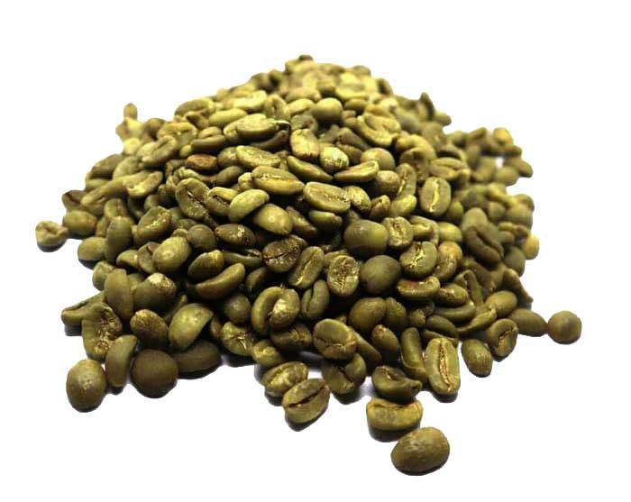 Gayo mangoose coffee bean