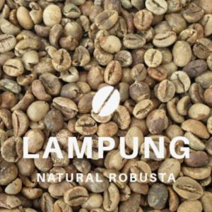 Lampung robusta coffee bean