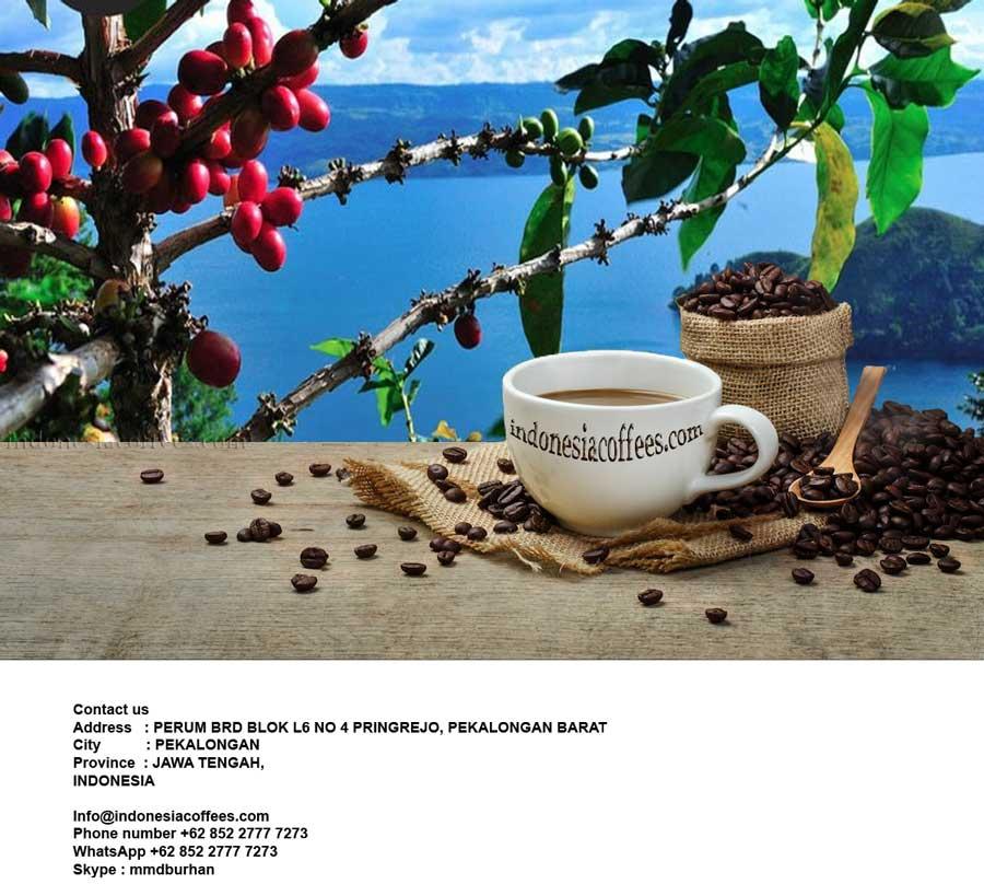 Coffee bean supplier