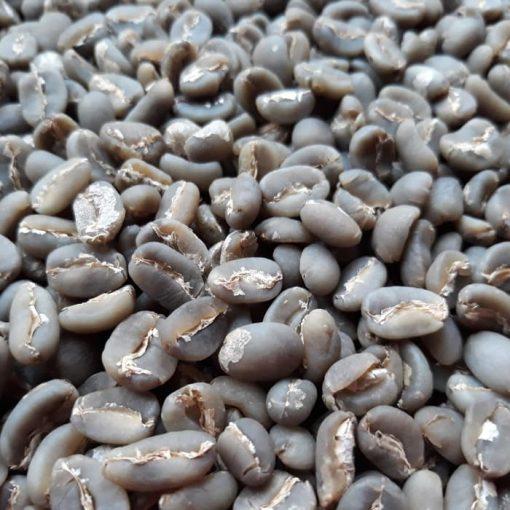 gayo semi wash arabica coffee green bean