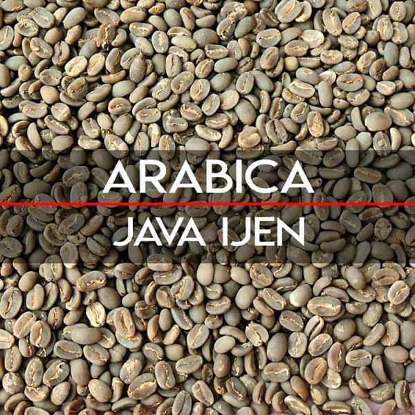 Java specialty arabica coffees beans