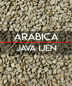 Java arabica coffee beans