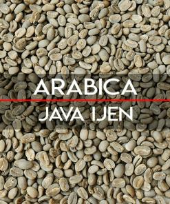 Java arabica coffee beans