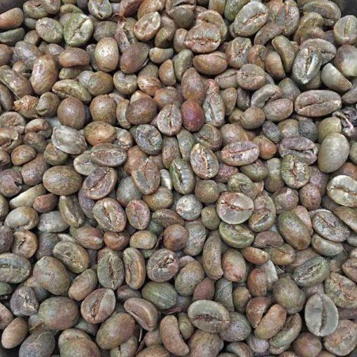 Java robusta coffee beans