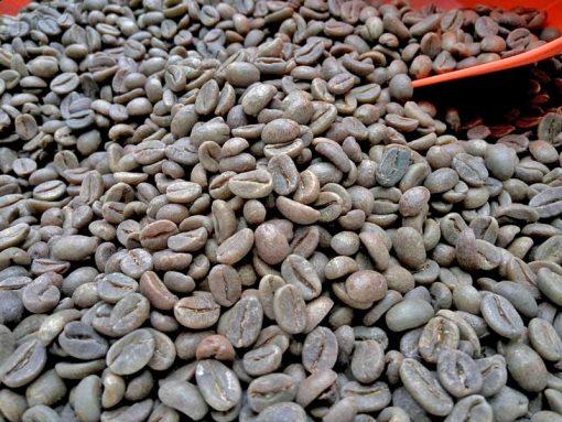 Java unroasted coffee beans