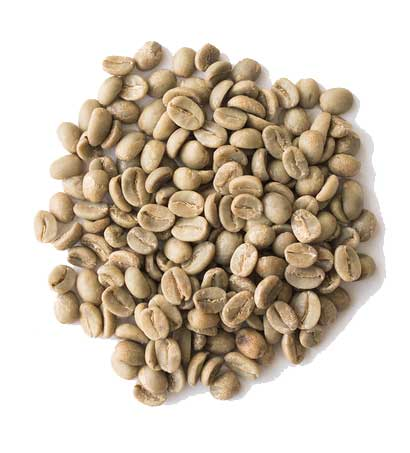 Java washed coffee beans