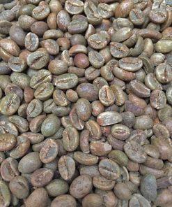 Javanese robusta coffee beans