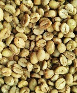 Sidikalang robusta coffee bean