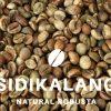 Sidikalang robusta coffee beans