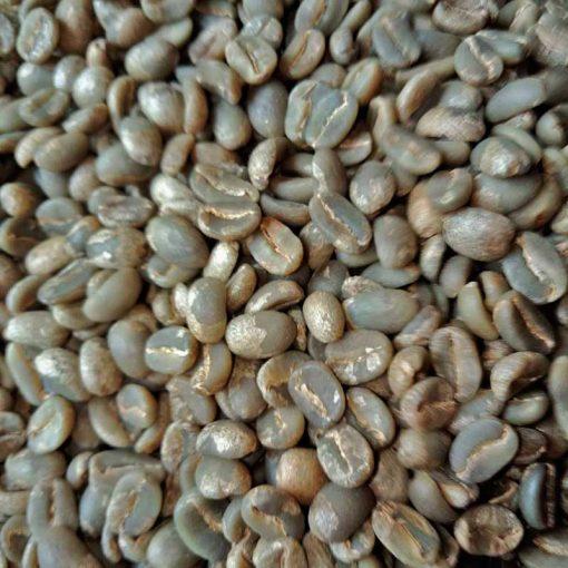 Specialty bajawa arabica coffee bean