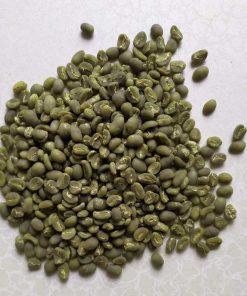 Gayo organic coffee beans